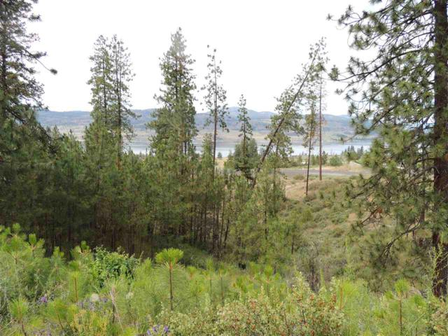 39525 Peach Orchard Way N. Lot 70, Seven Bays, WA 99122 (#201819768) :: Top Agent Team