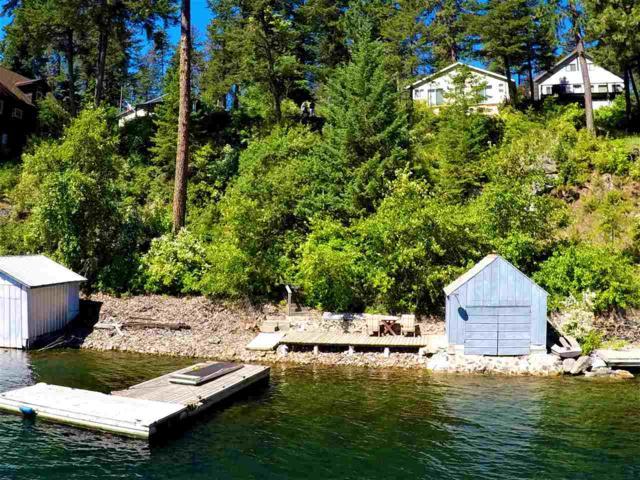 45256 Lake Shore Homes Rd, Loon Lk, WA 99148 (#201819945) :: 4 Degrees - Masters
