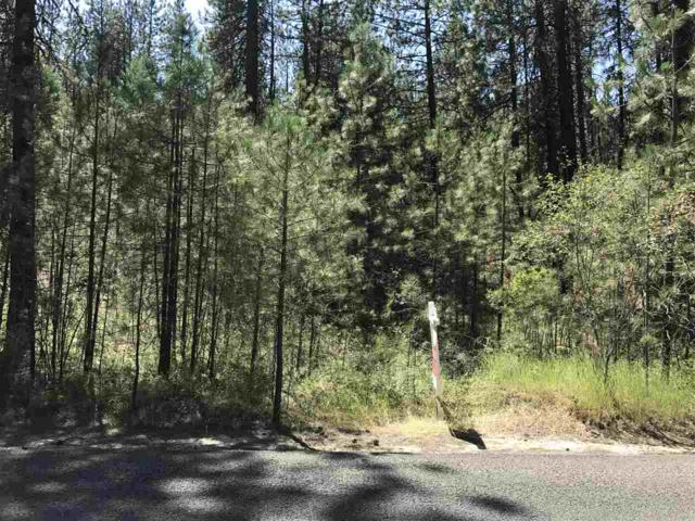 """xxxx N South Bank Rd Parcel """"H"""", Nine Mile Falls, WA 99026 (#201821356) :: The Hardie Group"""