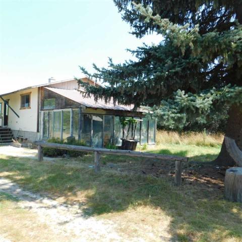 155 Lower Quartz Creek Rd, Priest River, ID 83856 (#201822184) :: Northwest Professional Real Estate