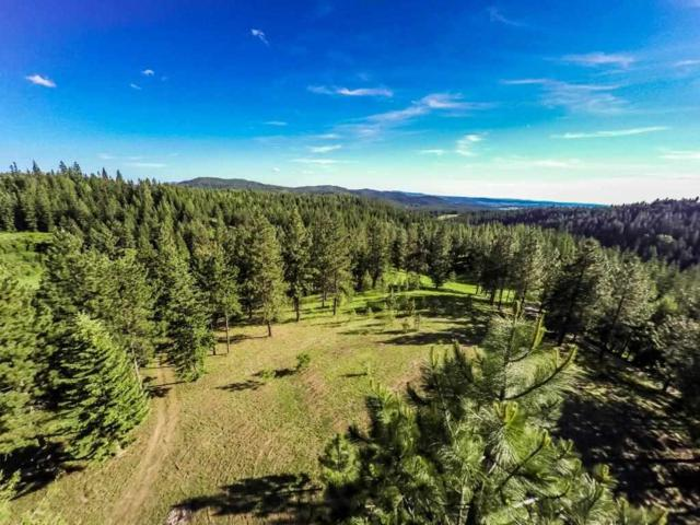 23300 N Mt Spokane Park Dr, Mead, WA 99021 (#201822288) :: The 'Ohana Realty Group Corporate Offices