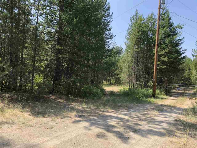 Lot 6 Stanley Ct, Newport, WA 99156 (#201822398) :: The Spokane Home Guy Group