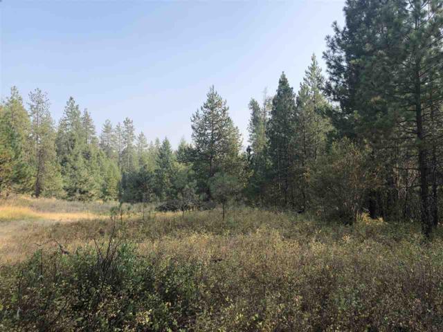 TBD E Bridges Rd, Elk, WA 99009 (#201822989) :: Northwest Professional Real Estate