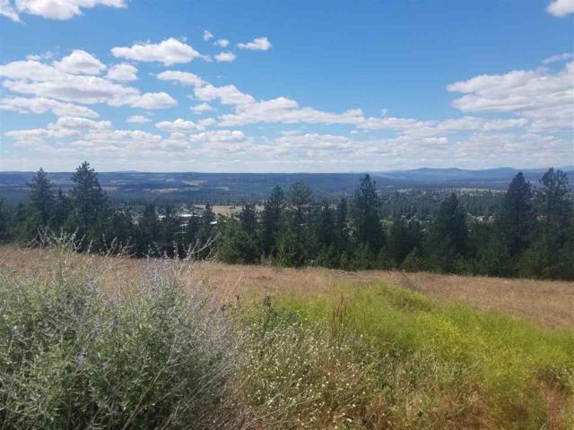 4310 W Reese Ct, Spokane, WA 99208 (#201824021) :: The Synergy Group