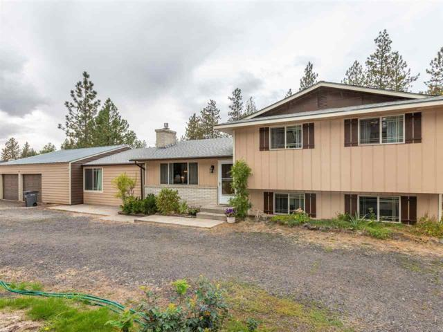16825 N Suncrest Dr, Nine Mile Falls, WA 99026 (#201824287) :: The Synergy Group