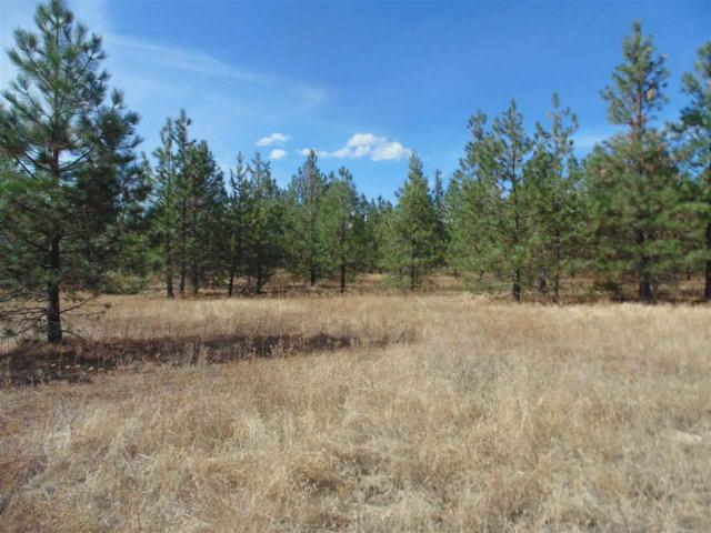 X Elk To Highway Rd, Elk, WA 99009 (#201824661) :: The Synergy Group