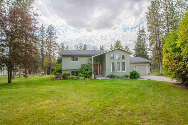 16520 N Wylie Dr, Nine Mile Falls, WA 99026 (#201824688) :: The Synergy Group