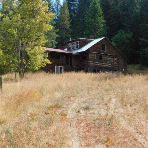 756 Saddle Mountain Dr, Newport, WA 99156 (#201824758) :: Northwest Professional Real Estate