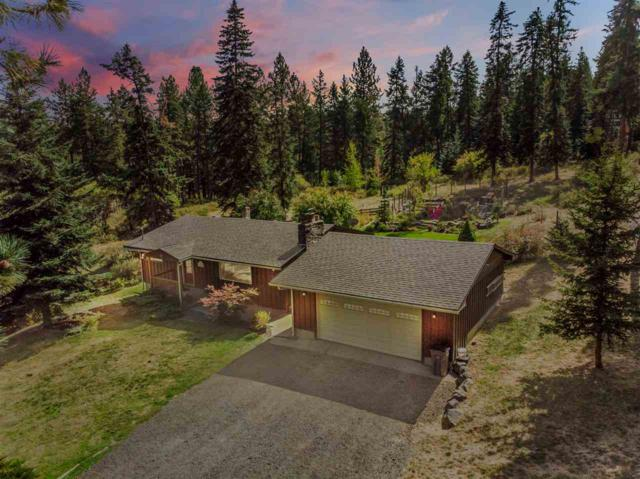 19123 N Halliday Rd, Mead, WA 99021 (#201824759) :: The Synergy Group