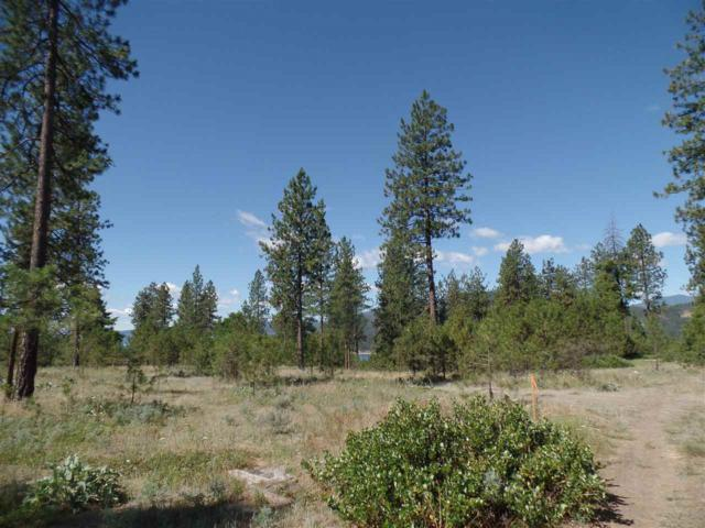 Lot 107 Old Kettle Rd, Kettle Falls, WA 99141 (#201825029) :: The Hardie Group