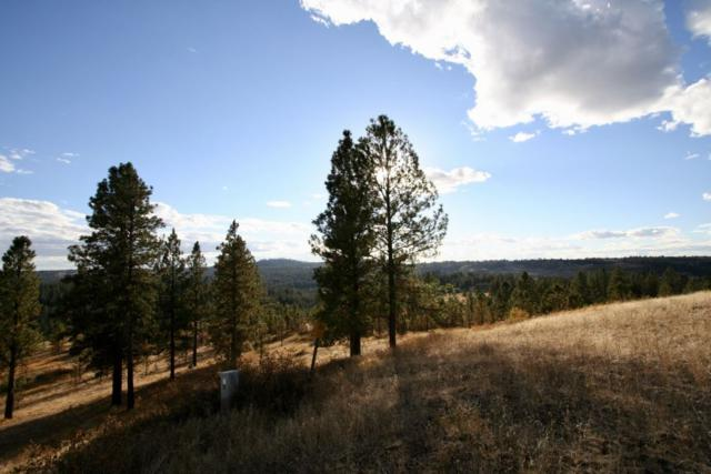 12224 S Valley Chapel Rd Approx., Valleyford, WA 99036 (#201825250) :: The Spokane Home Guy Group