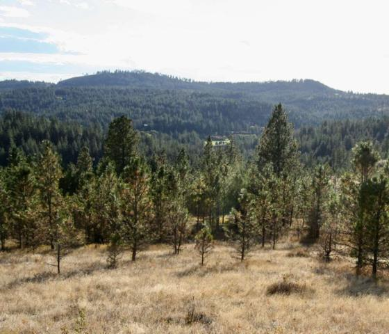 12298 S Valley Chapel Rd Approx., Valleyford, WA 99036 (#201825251) :: The Spokane Home Guy Group
