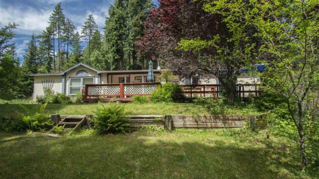 22306 N Travis Rd, Mead, WA 99021 (#201825332) :: The Synergy Group