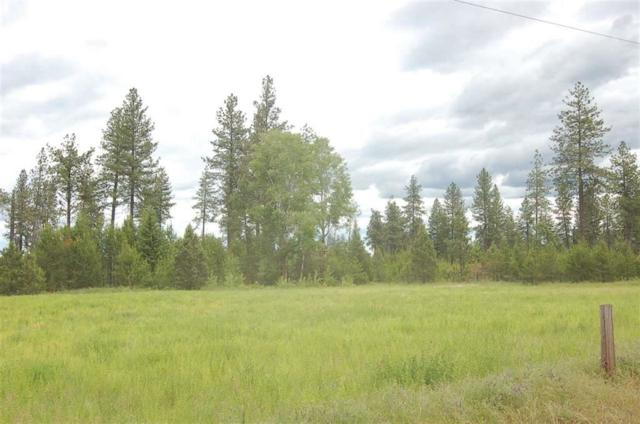 xxx33 Fausett Rd Tract 33, Deer Park, WA 99006 (#201825685) :: 4 Degrees - Masters