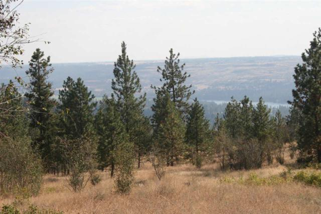 XX Saddle Mountain Way Lot 29, Deer Park, WA 99006 (#201825815) :: The Spokane Home Guy Group
