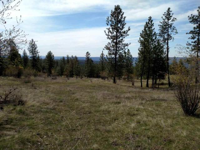 XX Saddle Mountain Way Lot 27 & 29, Deer Park, WA 99006 (#201825818) :: The Spokane Home Guy Group