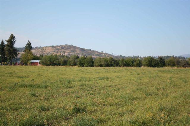5010 N Oakland Rd Lot 2, Otis Orchards, WA 99027 (#201825895) :: Prime Real Estate Group