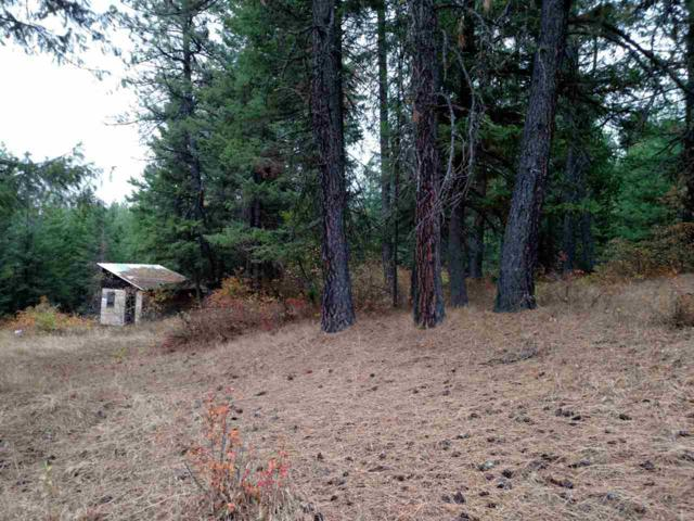 0 E Deer Creek Rd, Chattaroy, WA 99003 (#201826112) :: The Hardie Group