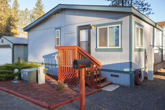3419 E Valley Forge Ln, Mead, WA 99021 (#201826120) :: The Hardie Group
