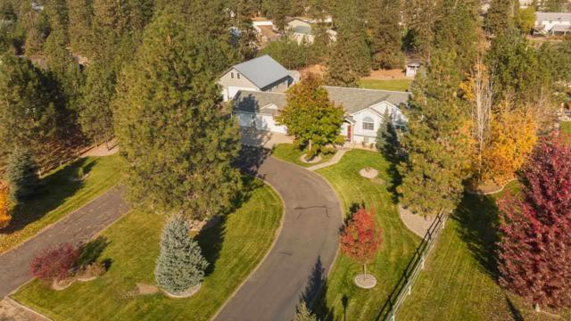 17634 N Sunnyvale Dr, Nine Mile Falls, WA 99026 (#201826177) :: 4 Degrees - Masters