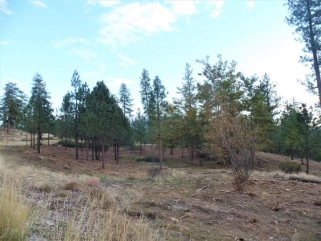 LOT 202 Old Kettle Rd, Kettle Falls, WA 99141 (#201826358) :: The Synergy Group