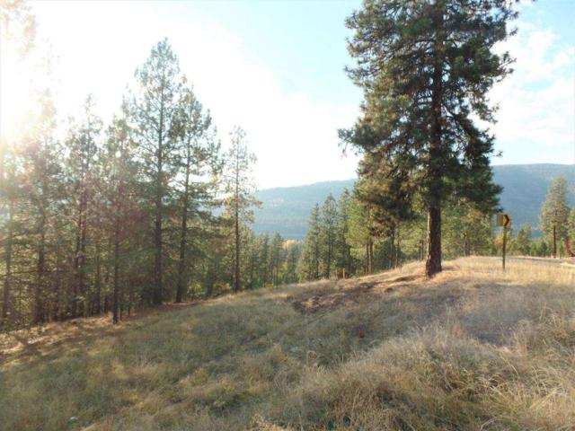 LOT 201 Old Kettle Rd, Kettle Falls, WA 99141 (#201826360) :: The Synergy Group