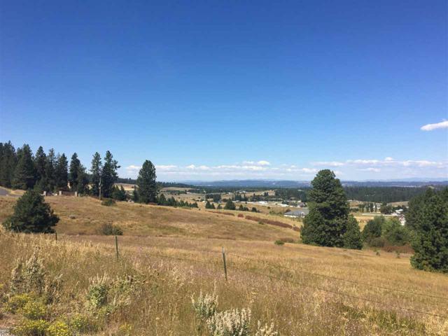 6611 S Saddle Ridge Rd, Greenacres, WA 99016 (#201826856) :: The Spokane Home Guy Group