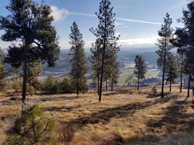11615 S Elk Run Lane, Spokane, WA 99224 (#201826859) :: The Spokane Home Guy Group