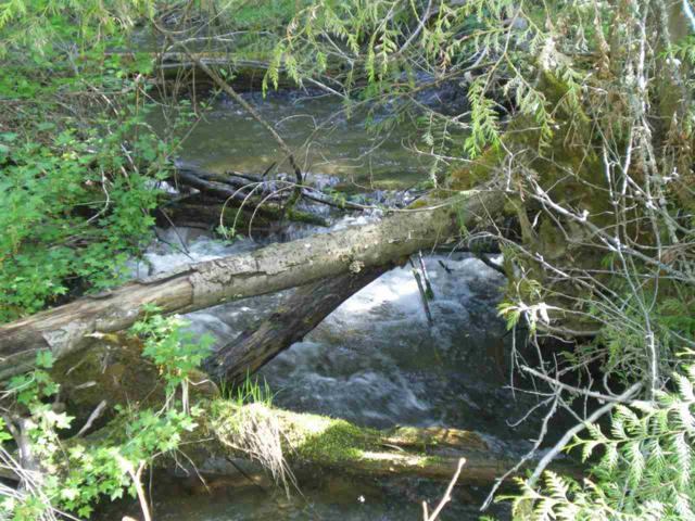 34XX Flat Creek Rd, Kettle Falls, WA 99141 (#201827775) :: The Synergy Group