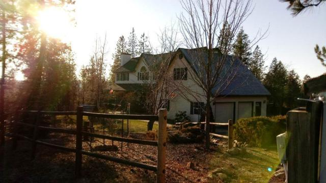 20811 N Day Mount Spokane Rd, Mead, WA 99021 (#201827883) :: Top Agent Team