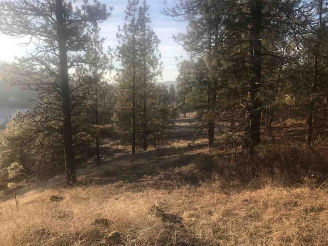 XX Elk Camden Rd, Elk, WA 99009 (#201827916) :: Five Star Real Estate Group
