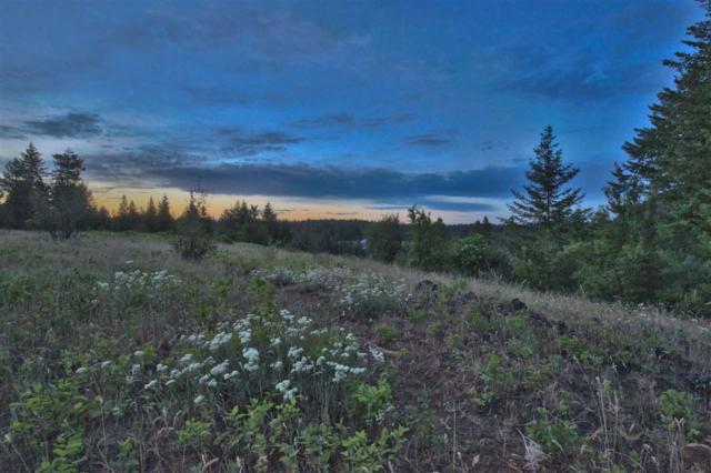 TBD Four Mound Rd, Spokane, WA 99224 (#201828064) :: The Spokane Home Guy Group