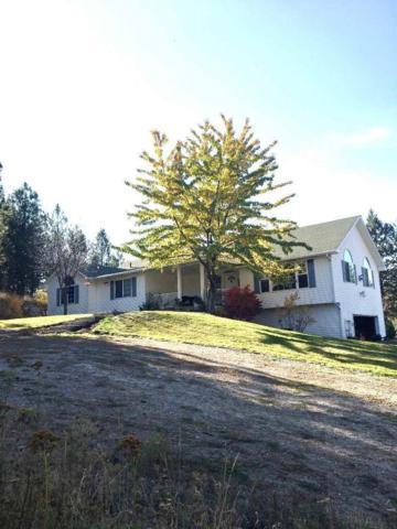 11310 S Jackson Rd, Mica, WA 99023 (#201828072) :: Prime Real Estate Group