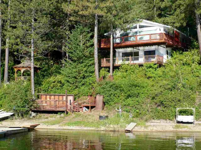 4110 #62 Tamarack Bay Rd, Loon Lake, WA 99148 (#201828320) :: Prime Real Estate Group