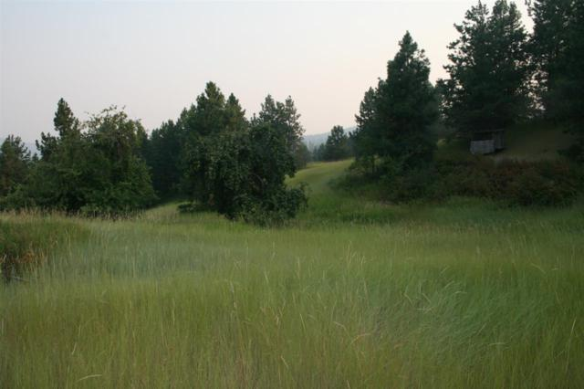 000 Quail Ridge Way, Deer Park, WA 99006 (#201910084) :: The Synergy Group