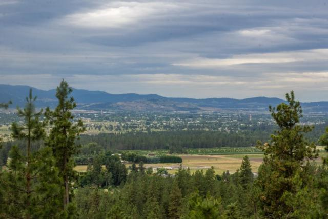 xxx N Lookout View Ln, Newman Lake, WA 99025 (#201910231) :: The Synergy Group