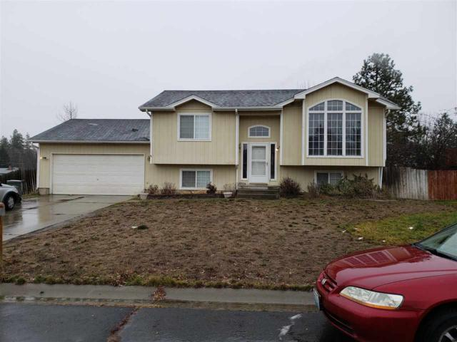 13026 N Miami Ct, Mead, WA 99021 (#201910235) :: 4 Degrees - Masters