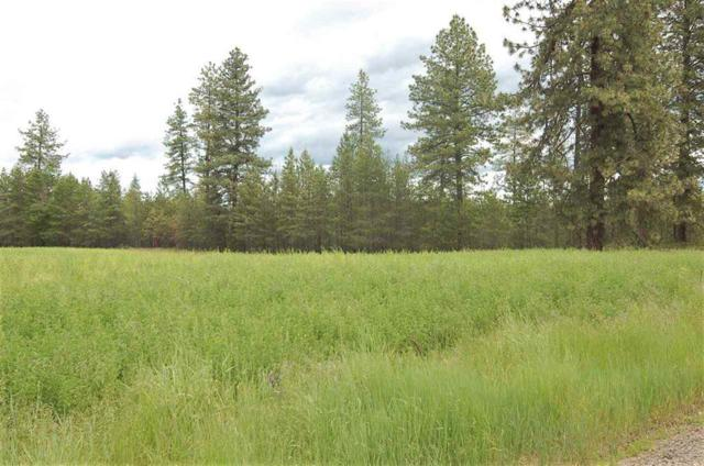 xxx25 Fausett Rd Tract 25, Deer Park, WA 99006 (#201910250) :: The Synergy Group