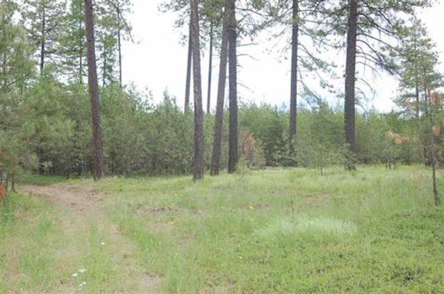 xxx19 W Montgomery Rd Tract 19, Deer Park, WA 99006 (#201910258) :: The Synergy Group
