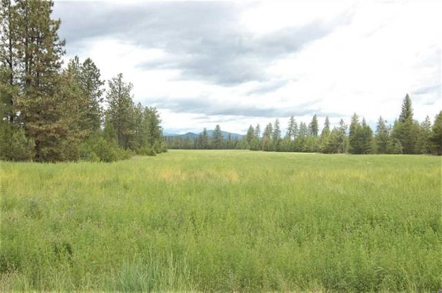 xxx6 Fausett Rd Tract 6, Deer Park, WA 99006 (#201910268) :: The Spokane Home Guy Group