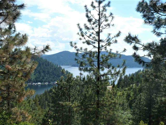 4100 N Deer Lake Lot 3 Rd, Loon Lake, WA 99148 (#201910309) :: The Spokane Home Guy Group
