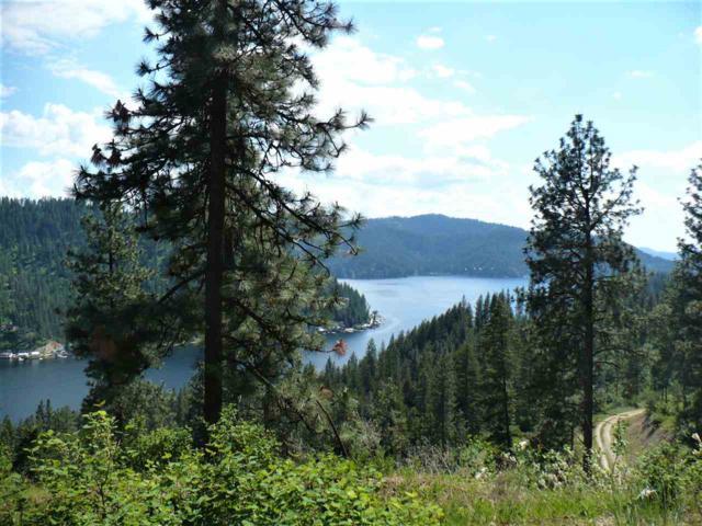 4100 N Deer Lake Lot 4 Rd, Loon Lake, WA 99148 (#201910310) :: The Synergy Group