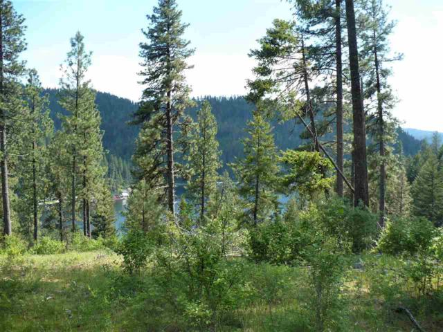 4100 N Deer Lake Lot 11 Rd, Loon Lake, WA 99148 (#201910313) :: The Spokane Home Guy Group
