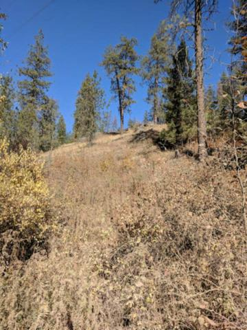 00 Hardesty Rd Parcel # 39351., Elk, WA 99003 (#201910340) :: Prime Real Estate Group