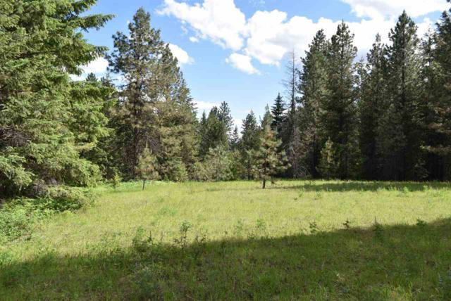 1145 Orin Rice Rd, Colville, WA 99114 (#201910407) :: The Synergy Group