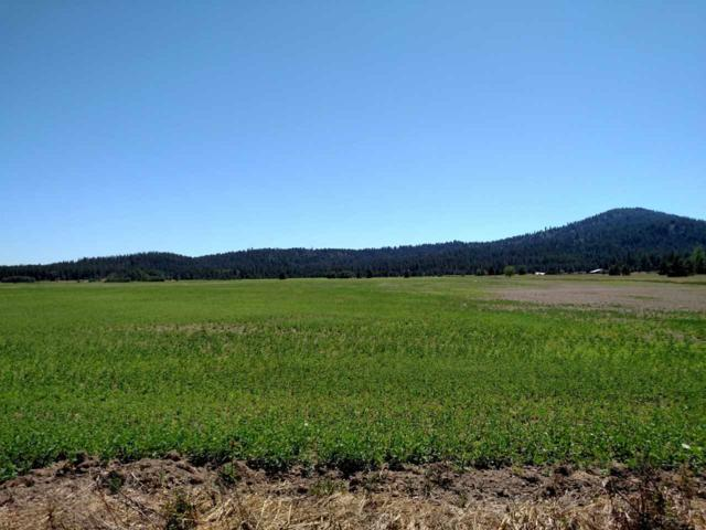 50XX W Casberg Burroughs Rd Lot 1, Deer Park, WA 99006 (#201910433) :: The Synergy Group