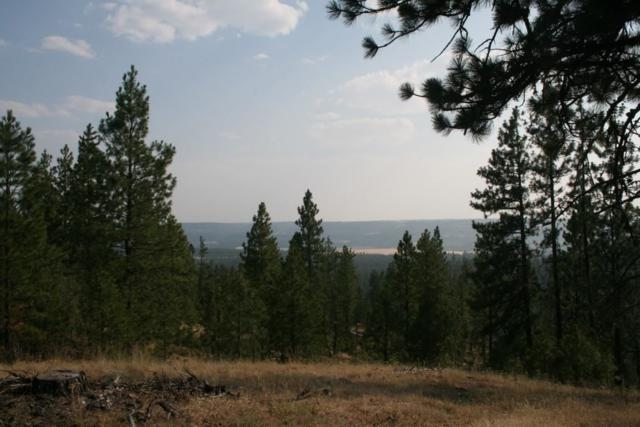0000 Rocky Top Way Lot A, Deer Park, WA 99006 (#201910531) :: The Synergy Group