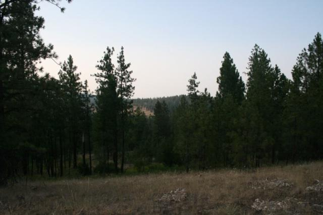 0000 Rocky Top Way Lot D, Deer Park, WA 99006 (#201910534) :: The Synergy Group