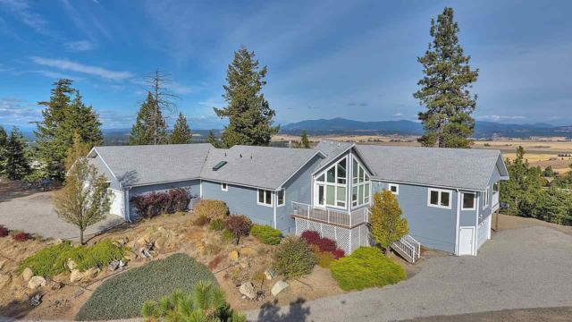 3924 E Sorrel Ln Parcel 36151.91, Mead, WA 99021 (#201910619) :: The Hardie Group