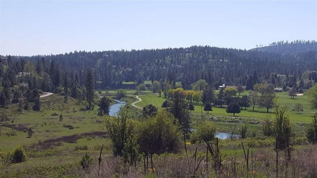 11503 S Fairway Ridge Ln Lot 1; Block 26, Spokane, WA 99224 (#201910649) :: The Hardie Group